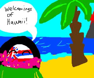 Hawaii welcoming you
