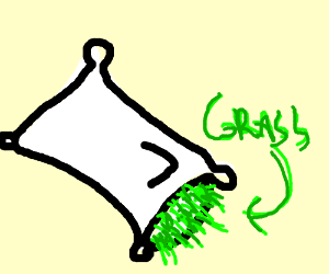 grass in the pillow
