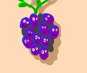 Grapes are happy to be together in a bunch <3