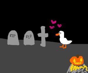 White bird in love in graveyard+Halloween (wth