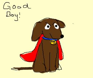 Good Boy the Super Dog!