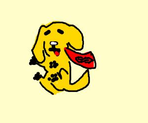 Super dog (he is a good boy)