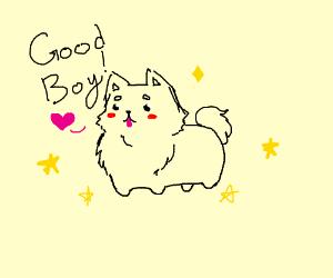 Kawaii Doggo