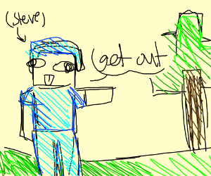 Minecraft steve wants someone to get out