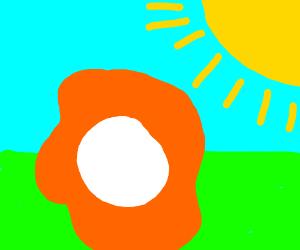 Orangeblobwithwhitecircleinthemiddleundersun