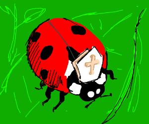 Ladybug Pope