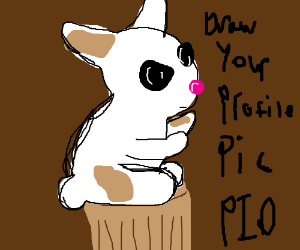 Draw your profile picture PIO