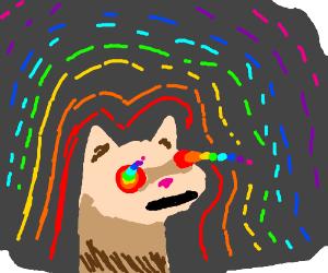 Psychedelic Ferret