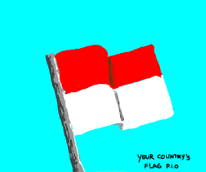 Your country's flag (P.I.O)