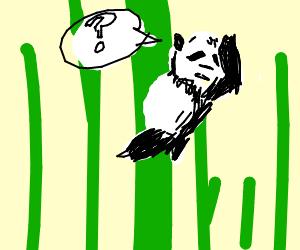 Panda in bamboo searching for something
