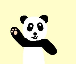 A panda with a black eye.