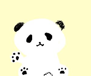 Panda waving