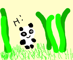 """Panda in bamboo forest says """"Hello!"""""""