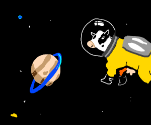 Car and Cow in space