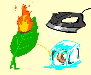 leaf, fire, ice vs pee, a cashew, an iron