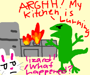 lizard hates its kitchen buny watches his rage