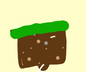 grass block, minecraft