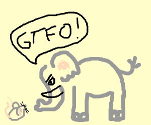 Elephant Eeek A Mouse