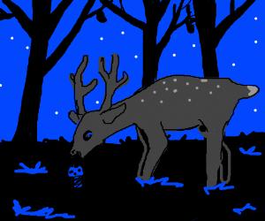 deer eats mushroom