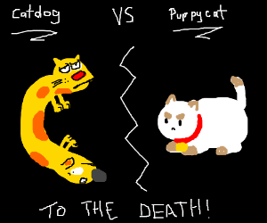 Puppy cat vs. Catdog - to the death!