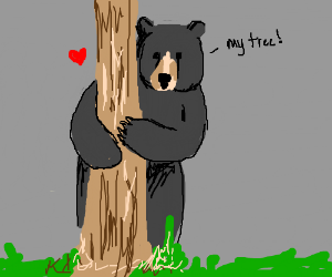 Black bear loves trees