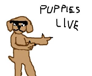 A dog being shot