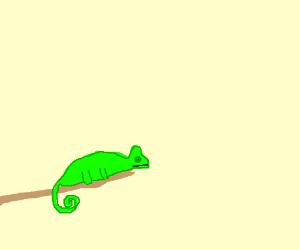 realistic chameleon