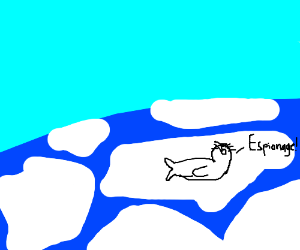 "A Seal crying ""Espionage!"""