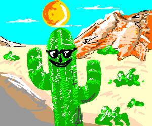cool cactus