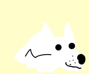 lightning bolt dog