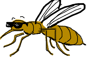 cool wasp with shades