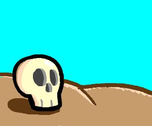 Skull in the Desert