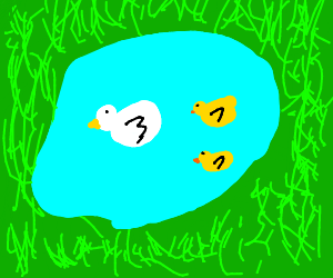 Two yellow ducks swimming with chicken