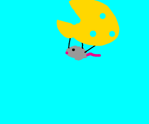 Mouse useing cheese as a parachute