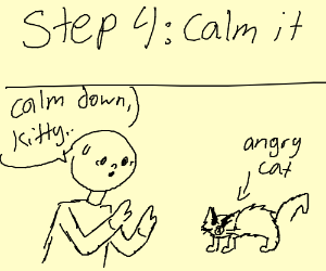 Step 3: The cat got angry