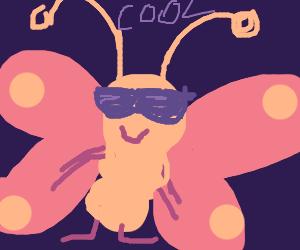butterflies are kewl