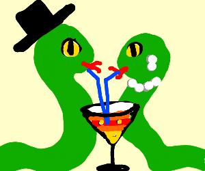 posh snake couple share a beverage