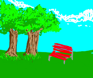 trees and a bench