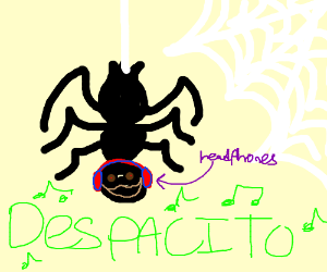 despacito spider