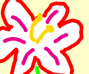 a beautiful thriving flower