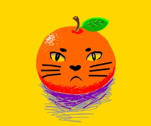 a cat face on an orange