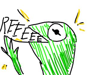 Kermit: REEEEEEEEEEEEEEEEEEEEEEEEEEEEEEEEEEEEE