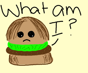 Hamburger has an existential crisis