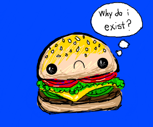 Hamburger questions its purpose