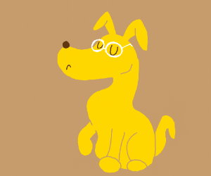 dog with glasses looking proud