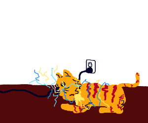 Cat chewing dumbly on electric wire