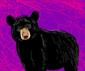 black bear over purple background