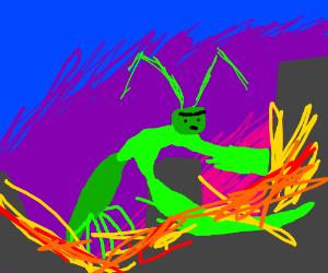Mantis attacks small town