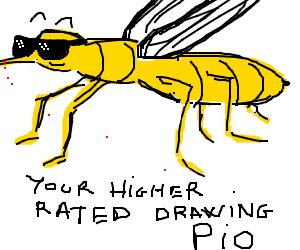 Ur higher rater drawing P.I.O