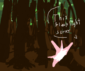 A flashlight in the woods, doesn't reveal much